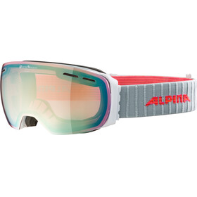 Alpina Granby QVMM Goggles white lightgold spherical